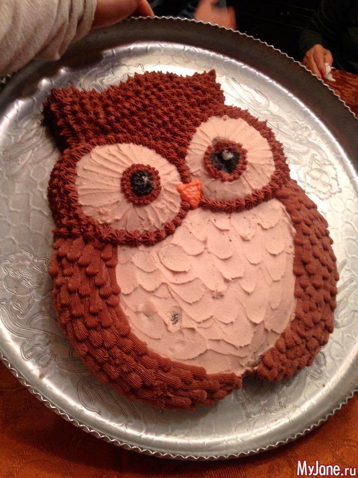 Торт животное своими руками 18