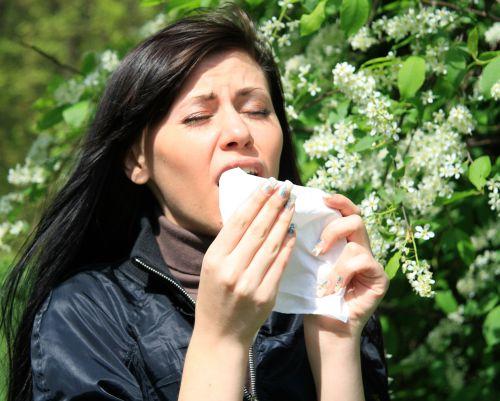 бронхиальная аллергическая астма как лечиться