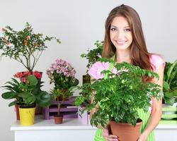 Производительность труда и близость комнатных растений связаны