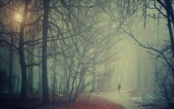 Мне хочется гулять по ноябрю