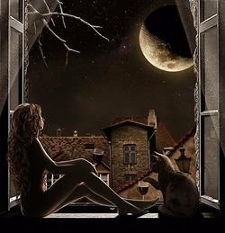 Я люблю одиночество лунных ночей,