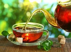 Учёные усомнились в пользе чая