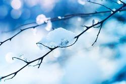 Зимняя оттепель опасна для здоровья