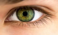 Глаза выдают принятие решения