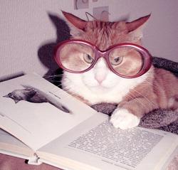 Про умные книги...