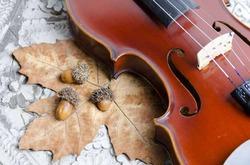 Музыка помогает в лечении рака