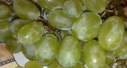 Новые полезные свойства винограда