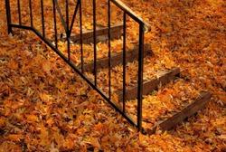 Планы на осень