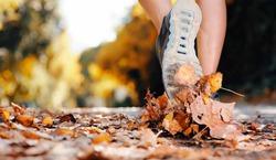 Прогулки снижают риск рака
