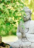 Медитация Випассана
