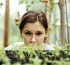 Растения-удобрения и зеленые защитники