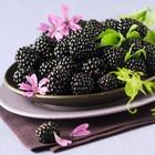 Вкусна ягода лесная и садовая. Часть 2