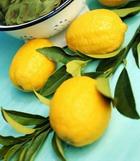 Лимон, арендовавший площадь в доме