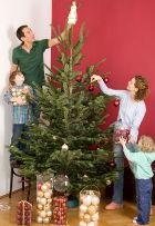 Выбираем и наряжаем елку