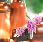 «Зимние» компоненты косметики: растительные масла
