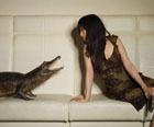 Какие домашние животные нынче в моде