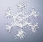 Снег и красота