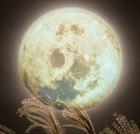 Астрологический прогноз на неделю с 14.04 по 20.04