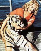 Маргарита Назарова: Жизнь цвета тигриной шкуры