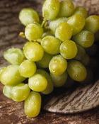 Виноградный пир