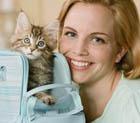 Именины кошки