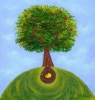 Дерево из косточки, или Экспериментальная ботаника