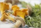 Заготовка грибов. Часть 2. Соление