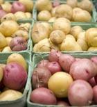 Блюда из картофеля. Часть 1