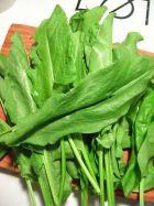 Летнее питание. Блюда из листовых овощей: шпинат и щавель. Часть 2