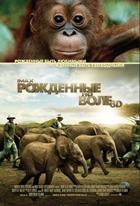 Рожденные на воле IMAX 3D / Born to Be Wild