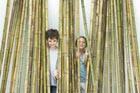 Не кури бамбук – носи бамбук