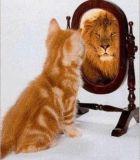 Как правильно хвалить себя?