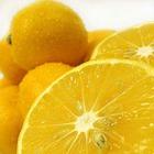 Лимону поставили памятник