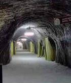 Единственный выживший после взрыва на шахте в Америке шахтер находится в коме