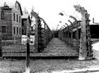 Сегодня - международный день памяти Холокоста