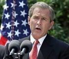 Демонстранты в Индии потребовали отмены визита Буша в страну
