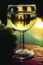 Госдума РФ ведет обсуждение запрета на импорт молдавских вин
