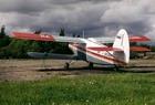 Пилот разбившегося Ан-2 мог быть в нетрезвом состоянии
