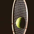 Теннис, финал: Россия сдает позиции