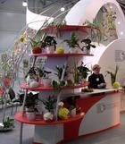 Первый международный фестиваль «Цветы мира»