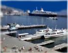 В ялтинском порту матросы отравились ядовитым газом