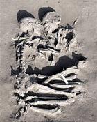 В Италии найдена могила Ромео и Джульетты  времен неолита