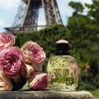 Романтические сады от Yves Saint Laurent: новый аромат Paris Jardins Romantiques