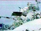 Все погибшие при аварии Ми-8 найдены