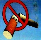 Сегодня Всемирный день без табака