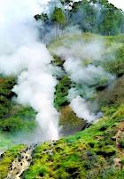 После селя на Камчатке нужно спасать Долину гейзеров