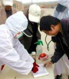 В Азии и Океании свирепствует смертельная лихорадка денге
