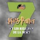 """Французская полиция арестовала подростка, посмевшего перевести """"Гарри Поттера"""""""