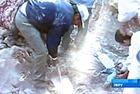 В Перу во время землетрясения разрушилась стена тюрьмы - сбежало 600 заключенных