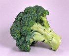 Капуста брокколи – щит от рака кожи